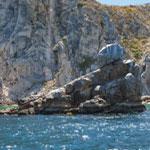 pelican-rock